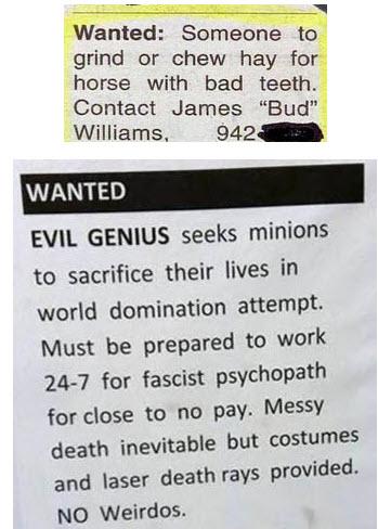 Funny job ad